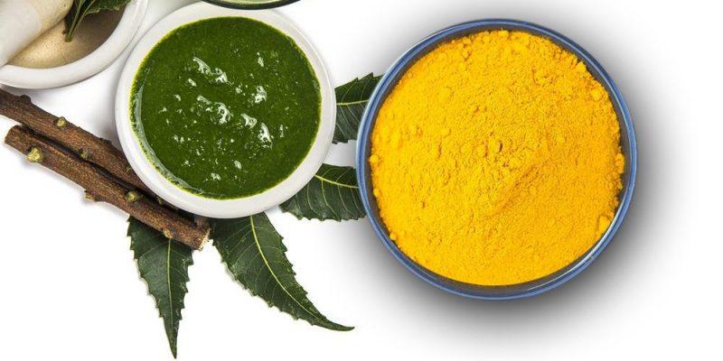 cây lá neem là gì và có tác dụng gì